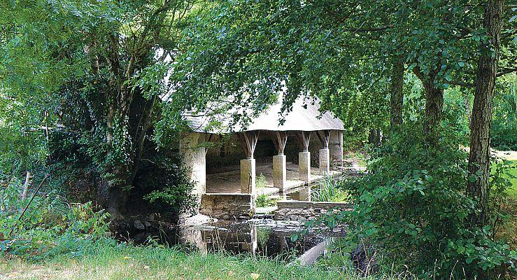 terrain - La Durandière - LA MOTHE ACHARD